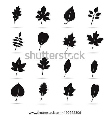 Set of tree leaves icon