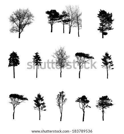 Set of Tree Silhouette Isolated on White Backgorund. Vecrtor Illustration - stock vector