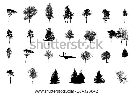 Set of Tree Silhouette Isolated on White Backgorund. Vector Illustration - stock vector