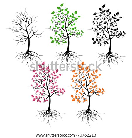 Set of trees on a white background. Trees have foliage of different color. - stock vector