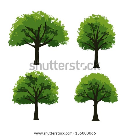 Set of trees on white background - Vector illustration - stock vector