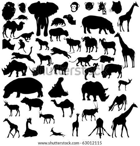 set of tropical animals - stock vector