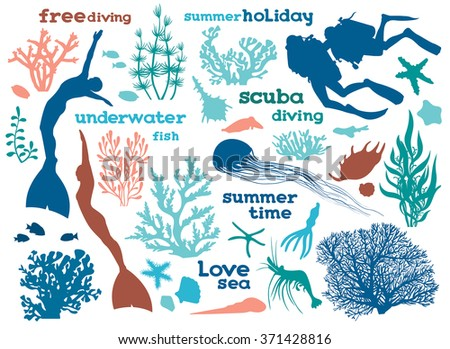 Set of underwater creatures, seaweed and divers. Vector illustration with isolated silhouette of ocean elements. - stock vector