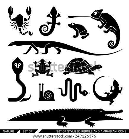 Set of various animal icons: scorpions, snakes, frogs, lizards, snails, crocodiles, turtles, cobra, chameleon, gecko  . Vector illustration. - stock vector