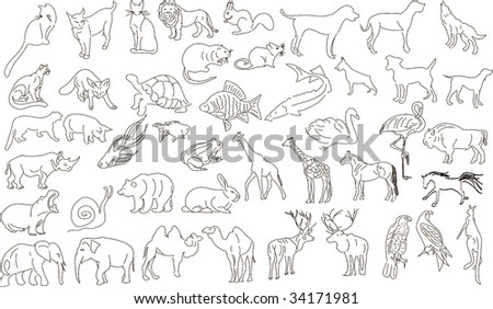 Set of vector animals, rough outlines - stock vector
