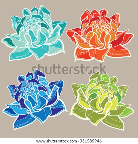Set of vector floral design elements, freehand drawing - flowers - stock vector