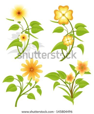 Set of Vector Flowers - stock vector