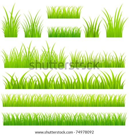 Set of vector grass. Tufts of grass. - stock vector