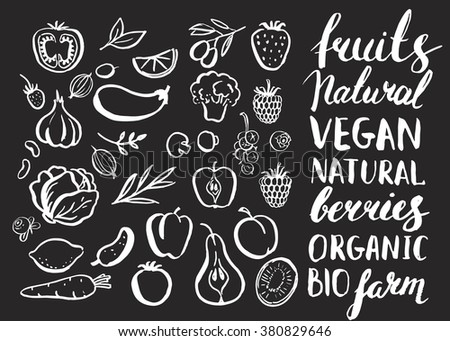 Set of vector handwritten elements. Food, farm, fresh, vegan, natural, product, bio. Ink brush hand lettering. Hand drawn fruits and vegetables. Lettering. Healthy food icons. Chalkboard.