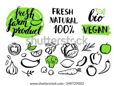 Set of vector handwritten elements with rough edges. Food, farm, fresh, vegan, natural, product, bio. Ink brush hand lettering. Hand drawn vegetables. Lettering. Badges. Healthy food icons.