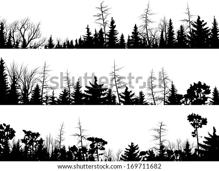 Set of vector horizontal silhouettes coniferous treetops forest (pine, spruce, cedar). - stock vector