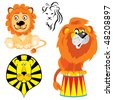 set of vector images of lions in different styles - stock photo