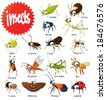 Set of vector insects - stock vector