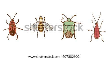 Set of vector insects. Design elements isolated on white background.