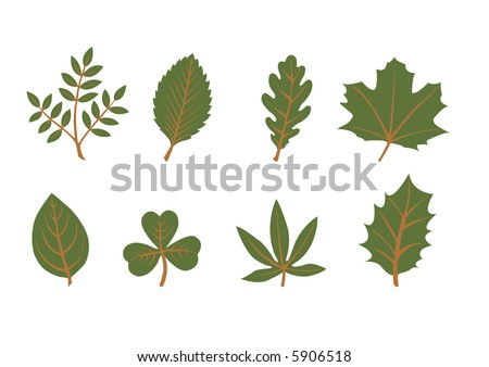 set of vector leaf shapes on white background - stock vector