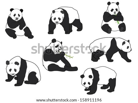 Set of Vector Panda silhouettes - stock vector