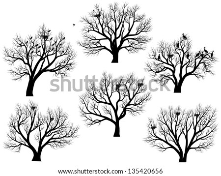 Set of vector silhouettes of birds nest in deciduous large trees without leaves during the winter or spring period.