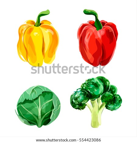 Set of vector watercolor vegetables. Pepper, broccoli, brussels sprout