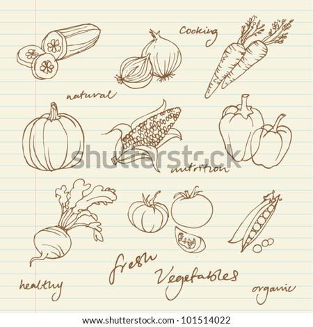 Set of Vegetables doodles vector - stock vector