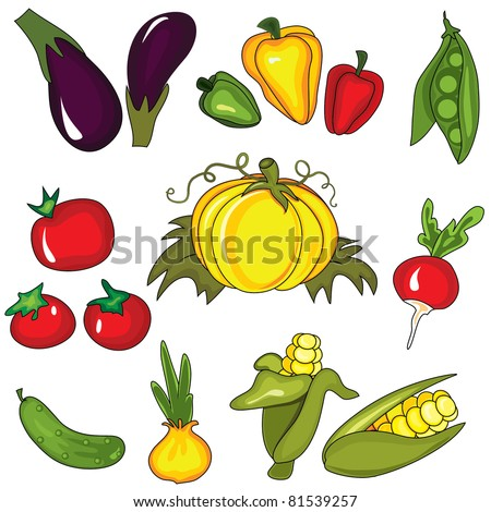 Set of vegetables isolated on the white background. Design elements - stock vector