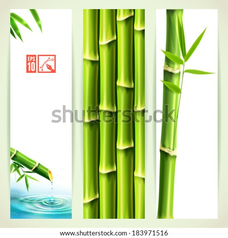 Set of Vertical Bamboo Banners. Vector illustration, eps10, editable. - stock vector