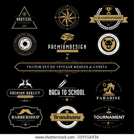 Set of vintage  badges and labels  - stock vector