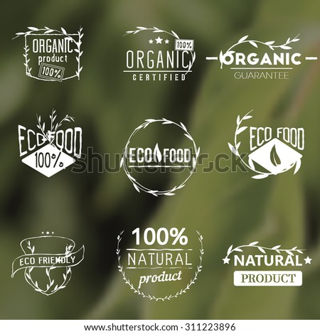 Set of vintage organic labels, badges, icons, logos, design templates. Plants elements, leaves. Natural, organic, eco food. Vector signs on blurred green background. - stock vector