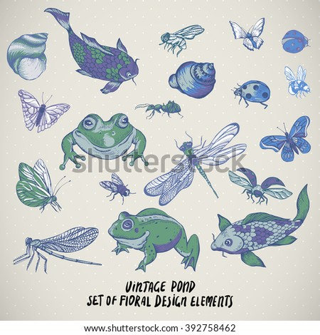 Set of vintage pond water animals vector elements, Botanical shabby chic illustration frog snail, shell dragonfly carp, butterfly, ladybird fly ant