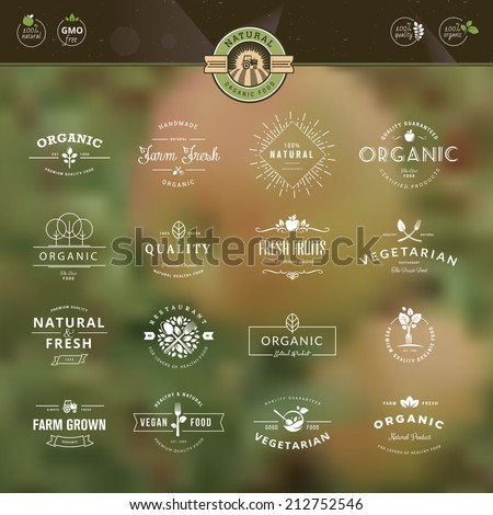 Set of vintage style elements for labels and badges for organic food and drink, on the nature background     - stock vector