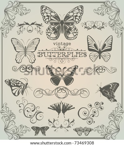 Set of vintage stylized butterflies and design elements - stock vector