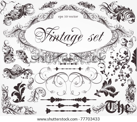 Set of vintage vector floral elements with flowers and retro frame. - stock vector