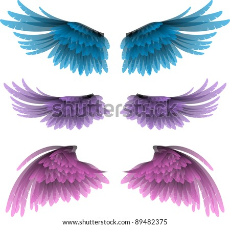 set of wings vector illustration - stock vector