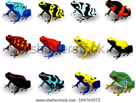 Set Poison Arrow Frog  Vector Illustration - stock vector