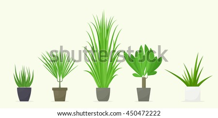 Set potted plants - stock vector