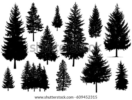 pine tree silhouette vector ozil almanoof co rh ozil almanoof co vector pine tree outline vector pine tree images