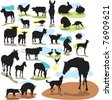 set vector silhouettes farm animals - stock vector