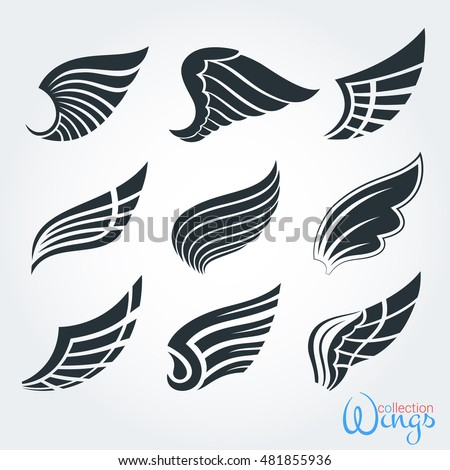 Set vintage wings for design projects. The elements and logo templates, stickers, icons, tattoos. The feathers of birds and abstract code in the form of the wing. Isolated objects.