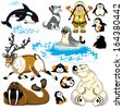 set with cartoon animals of arctic.Isolated pictures for little kids  - stock photo