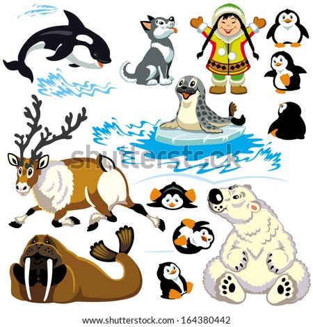 set with cartoon animals of arctic.Isolated pictures for little kids  - stock vector