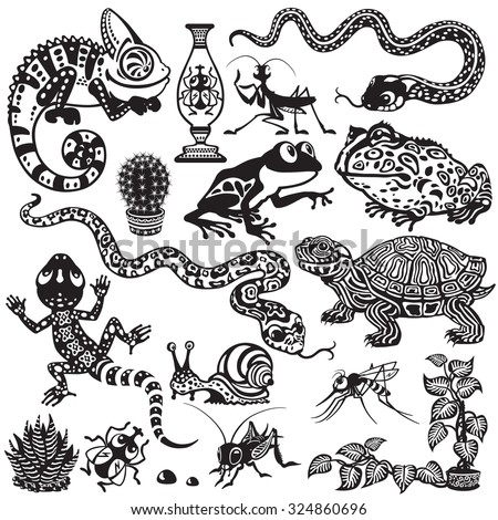 set with reptiles, amphibians and insect . Cartoon animals of terrarium . Black and white images