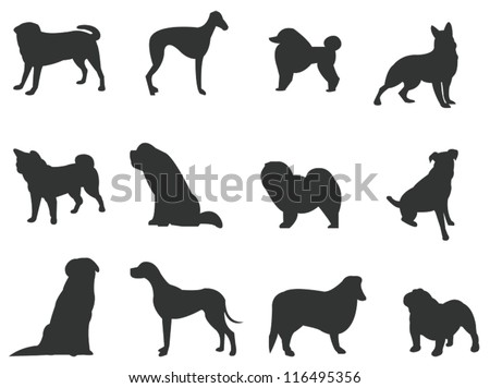 Sets of silhouette dog, in various species, create by vector - stock vector