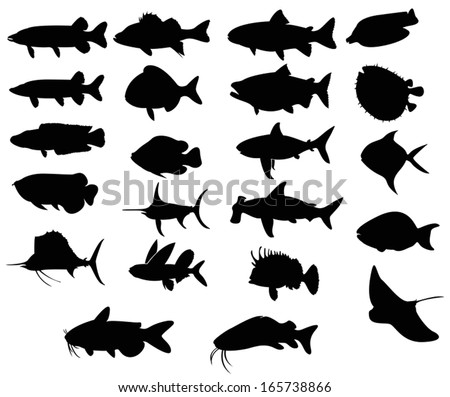 Sets of silhouette Fishes 3 with both freah water and sea, create by vector  - stock vector