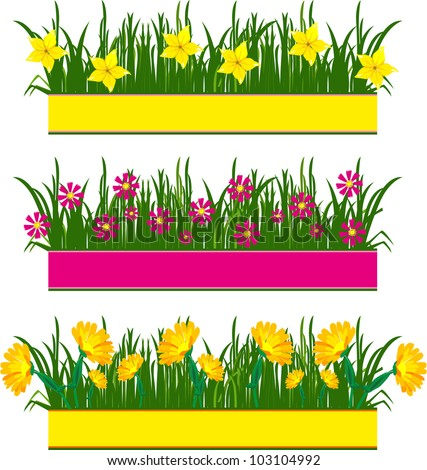 Several groups of flowers and herbs on a white background - stock vector