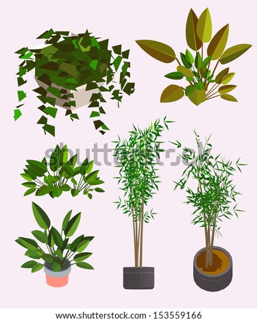 several plants. very detail vector isometric. see the other series - stock vector