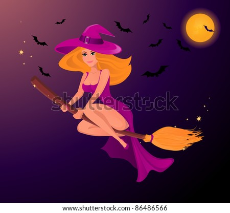 sexy Halloween witch on the magic broom - stock vector