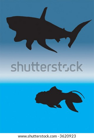 shark and goldfish - stock vector