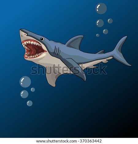 Shark open mouth, vector illustration