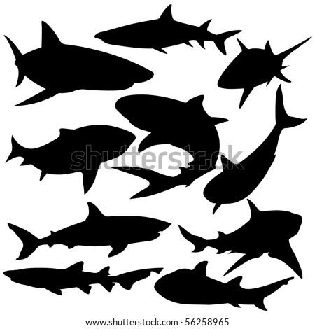 Sharks silhouette vector illustration. - stock vector