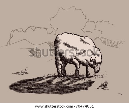 sheep in wolf's shadow. - stock vector