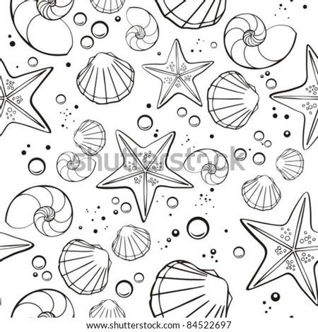 shells and starfish - stock vector